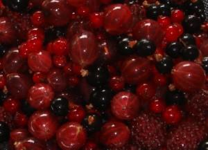Bær i forhaven