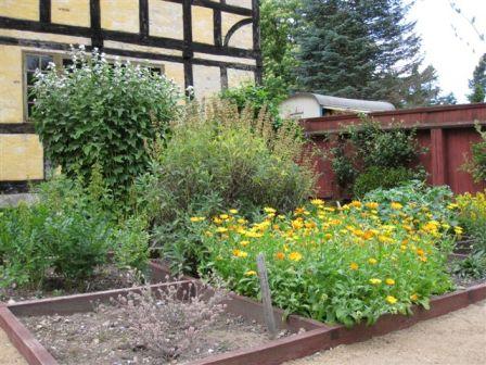 Haver i Danmark - Idas Have - inspiration til din have