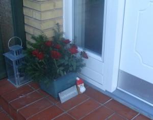 jul i haven (2)