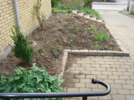 Haveprojekter - Idas Have - inspiration til din have