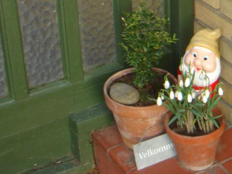 Vintergækker ved døren